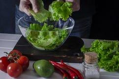 L'homme prépare la salade verte de la laitue romaine Concept sain de nourriture image stock