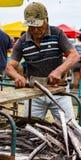 L'homme prépare les poissons fraîchement pêchés pour le marché Photo libre de droits