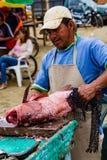 L'homme prépare les poissons fraîchement pêchés pour le marché Photographie stock