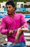 L'homme prépare les poissons fraîchement pêchés pour le marché Image libre de droits