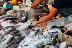 L'homme préparent des poissons pour la vente Photo stock