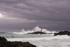 L'homme recherche des mollusques et crustacés sur des roches en mer orageuse Photos stock