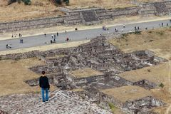 L'homme regarde des ruines antiques teotihuacan Mexico Photo stock