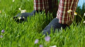 L'homme se tient sur l'herbe dans des pantoufles Pieds masculins dans des espadrilles sur l'herbe Photographie stock libre de droits