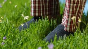 L'homme se tient sur l'herbe dans des pantoufles Pieds masculins dans des espadrilles sur l'herbe Photos stock