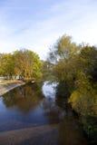 L'horizontal d'automne avec les arbres colorés s'approchent du fleuve Images stock