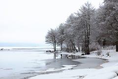 L'horizontal de l'hiver avec la neige a couvert des arbres Images libres de droits