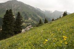 L'horizontal de la montagne Image stock