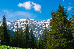 L'horizontal de la montagne dans le printemps Photographie stock libre de droits