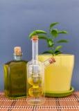 L'huile d'olive de deux bouteilles en verre se tient près d'une fleur sur un fond foncé Image stock