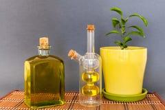 L'huile d'olive de deux bouteilles en verre se tient près d'une fleur sur un fond foncé Images stock
