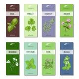L'huile essentielle marque la collection Basil, persil, romarin, origan, marjolaine, menthe poivrée, mélisse, thym raies Image stock
