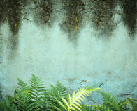 L'humidité image stock