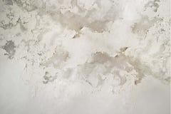 L'humidité excessive peut causer le mur de peinture de moule et d'épluchage tel que des fuites d'eau de pluie ou des fuites de l' Image libre de droits