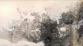 L'humidité excessive peut causer le mur de peinture de moule et d'épluchage, tel que des fuites d'eau de pluie ou des fuites de l photo libre de droits