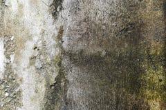 L'humidité excessive peut causer le mur de peinture de moule et d'épluchage, tel que les fuites d'eau de pluie ou le ‹de leaks† photographie stock