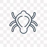 L'icône de vecteur de scarabée d'isolement sur le fond transparent, linéaire soit illustration libre de droits