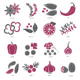 L'icône de Web a placé - des épices, des condiments et des herbes illustration de vecteur