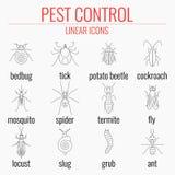 L'icona di controllo dei parassiti ha messo con i nomi degli insetti Immagine Stock