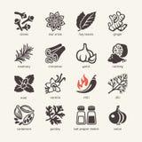 L'icona di web ha messo - le spezie, i condimenti e le erbe Immagini Stock