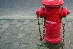 L'idrante del fuoco rosso accanto alla strada Immagine Stock Libera da Diritti
