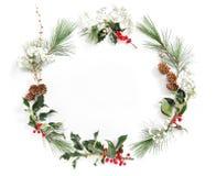 L'ilex de branches de pin de vue laisse à Noël la configuration florale d'appartement Photographie stock