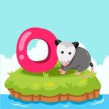 L'illustrateur de Letter'O est pour l'opossum Image stock