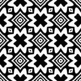L'illustration abstraite noire et blanche de vectore s'est mélangée à quelques éléments geomatrical et naturels illustration stock