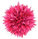 l'illustration 3D de l'objet tridimensionnel aiment un virus Photo libre de droits