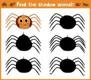 L'illustration de bande dessinée de l'éducation trouvera l'araignée appropriée d'animal de silhouette d'ombre Jeu d'assortiment p Photos libres de droits