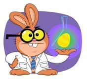 Scientifique de lapin de Pâques Photographie stock libre de droits