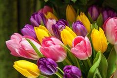 l'illustration de couleur de bouquet simulent l'eau de vecteur de tulipes Photographie stock libre de droits