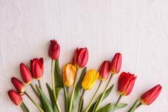 l'illustration de couleur de bouquet simulent l'eau de vecteur de tulipes Plan rapproché de fond de célébration Photos stock