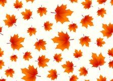 L'illustration de vecteur de l'érable d'automne part du fond sans couture Photos stock