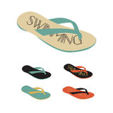 L'illustration de vecteur de l'équipement professionnel de natation a placé dans la Floride Image stock