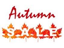 L'illustration de vecteur de la vente d'automne avec l'érable part dans le style grunge Images stock