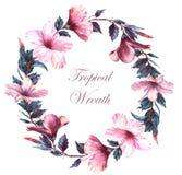 L'illustration florale d'aquarelle tirée par la main de la guirlande tendre avec la ketmie blanche et rose fleurit illustration de vecteur