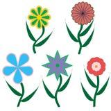 Cinque fiori differenti Illustrazione Vettoriale