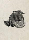 L'illustrazione di frutta arancio con il fiore, foglia, affetta l'inchiostro nero isolato sul fondo beige della carta di riso Fotografie Stock