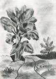 L'illustrazione di un albero Fotografia Stock Libera da Diritti