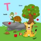 L'illustrazione ha isolato i T-denti della lettera dell'alfabeto, tigre, albero illustrazione vettoriale