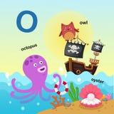 L'illustrazione ha isolato il O-polipo della lettera dell'alfabeto, gufo, ostrica illustrazione di stock