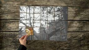 L'image à fond gris s'est réunie de différentes cartes de l'esprit de jeune femme Photos libres de droits