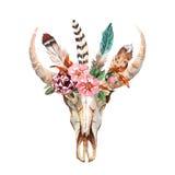 L'image chic de boho d'aquarelle fleurit, des plumes, éléments animaux Images stock