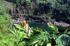 L'image courante de l'arc-en-ciel tombe, grand Isalnd, Hawaï Photographie stock libre de droits