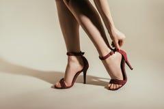 l'image cultivée de la femme ajustant la haute élégante a gîté des chaussures image stock