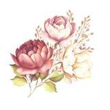 L'image d'une rose Illustration d'aquarelle d'aspiration de main Photo stock