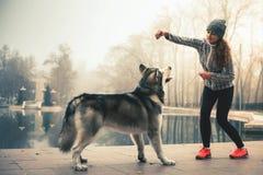 L'image de la jeune fille étreignent son chien, malamute d'Alaska, extérieur Photo stock