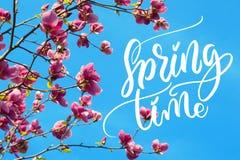 L'image de la magnolia de floraison fleurit au printemps le temps et le printemps de mots Lettrage de calligraphie Photographie stock libre de droits