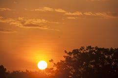 L'image de silhouette du coucher du soleil Photographie stock libre de droits